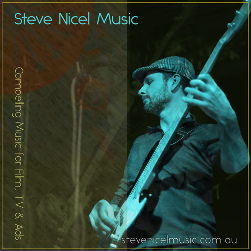 Steve Nicel with bass guitar. Producer & Multi-Instrumentalist for Recording and Live Performance